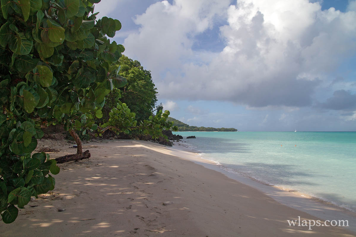 anse-canot-marie-galante