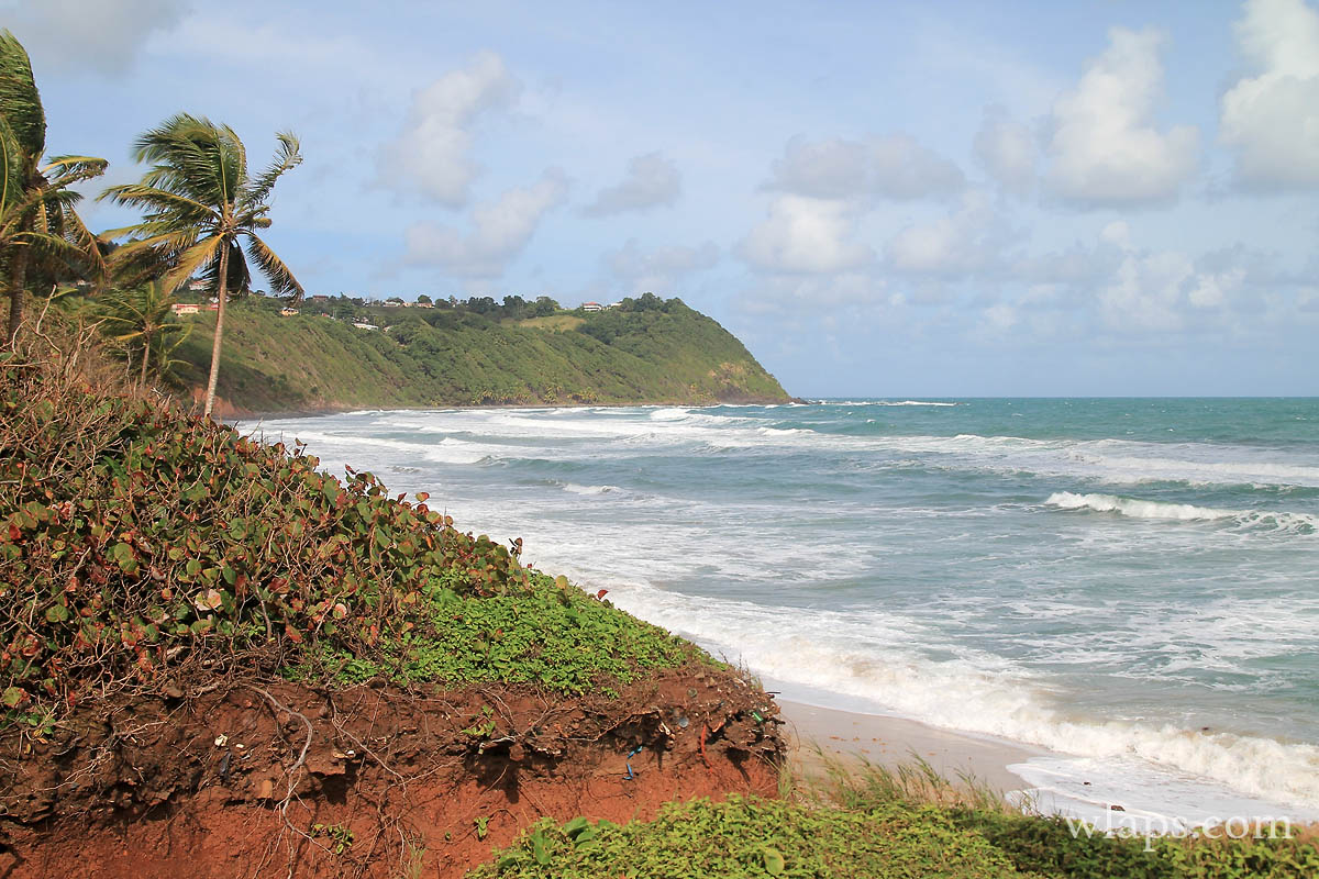terre-rouge-anse-charpentier-martinique