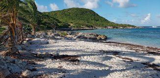 mer-anse-eau-guadeloupe