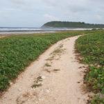 plage-anse-salabouelle-le-moule-guadeloupe