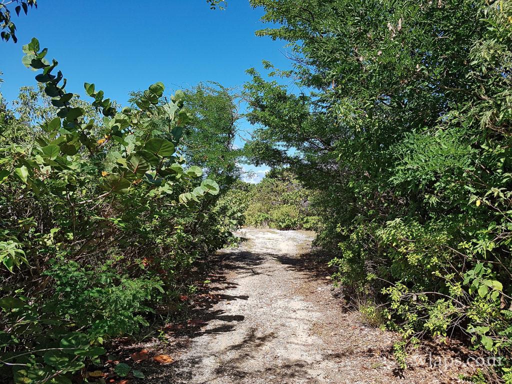 Mon activité favorite à l'ile de Marie Galante est la randonnée