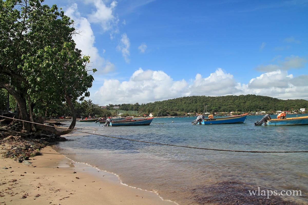 vue-plage-anse-tartane