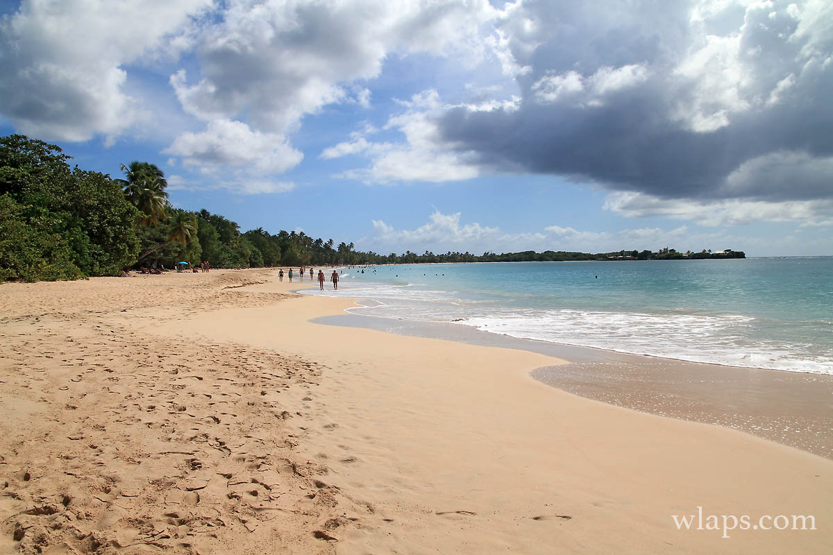 plage-anse-salines-martinique