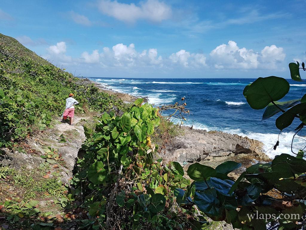 Une sentier de randonnée à Marie Galante pour découvrir l'ile en marchant