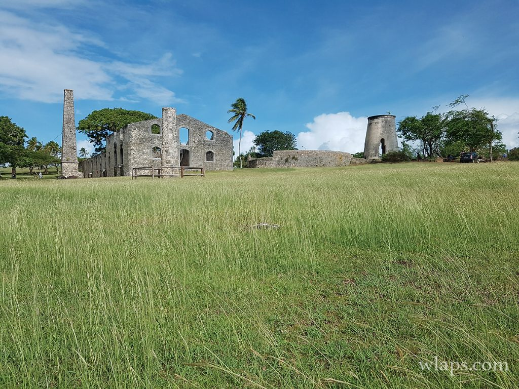 Visite des ruines de l'habitation Murat à Marie-Galante