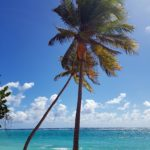 la-plage-de-la-feuillere-marie-galante-4