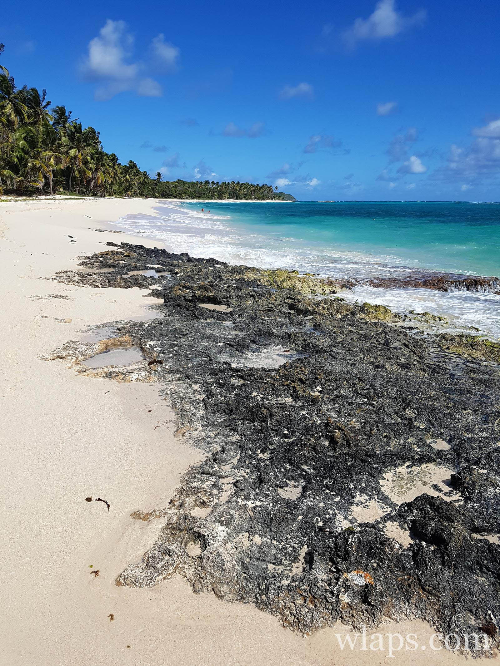 anse-plage-feuillere-guadeloupe