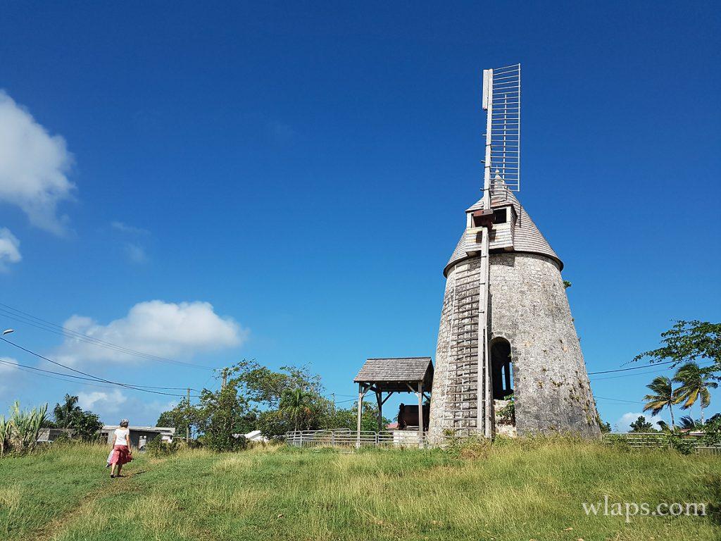 Admirer le moulin de Bezard à Marie Galante