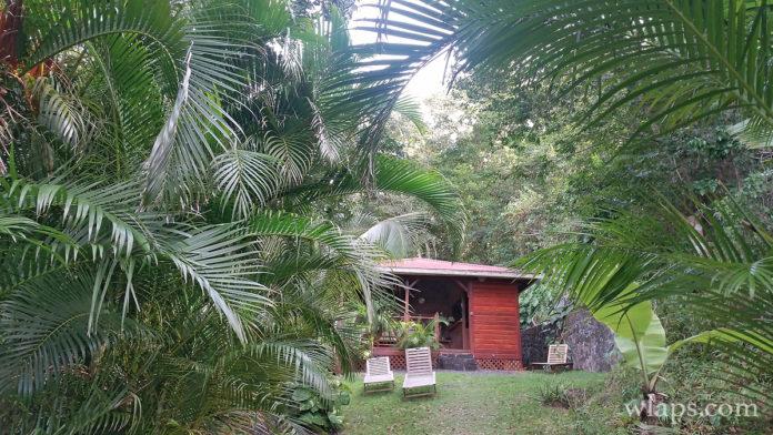 ecolodge-deshaies-guadeloupe