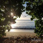 la-plage-des-trois-ilets-marie-galante-1