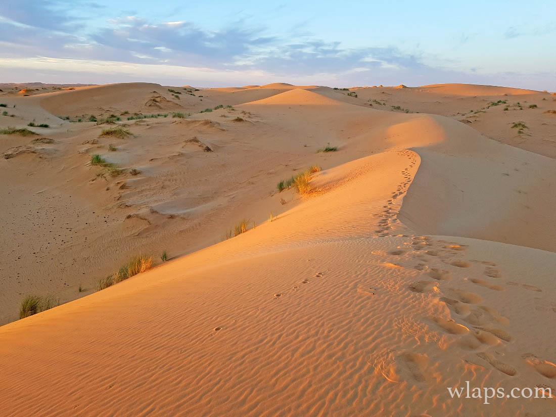 La plus belle dune que nous ayons vue