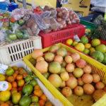 20191218_151331-fruits-legumes-marche