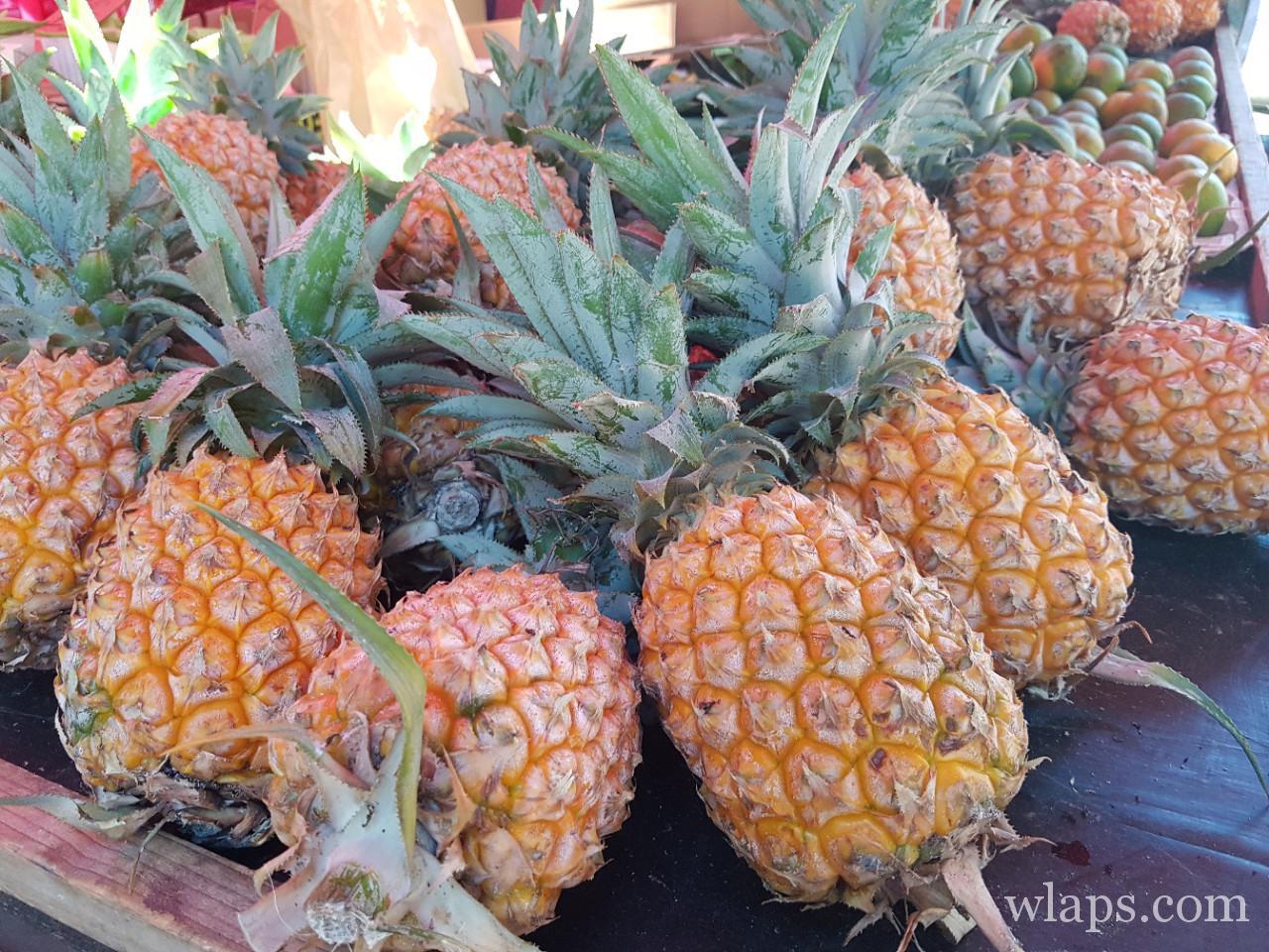 ananas victoria et fruits exotiques de l'ile de la réunion