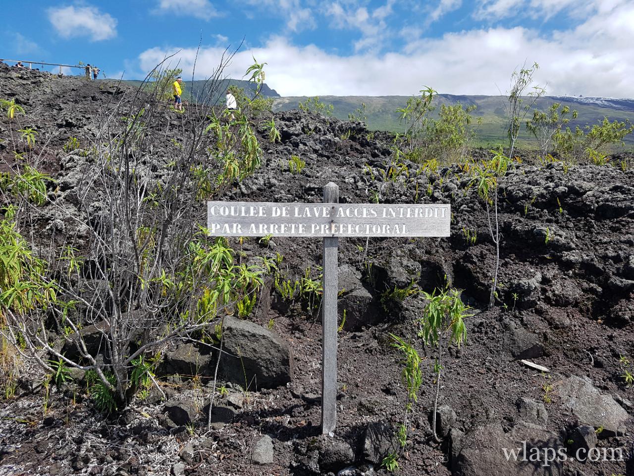 La route des laves à l'ile de La Réunion