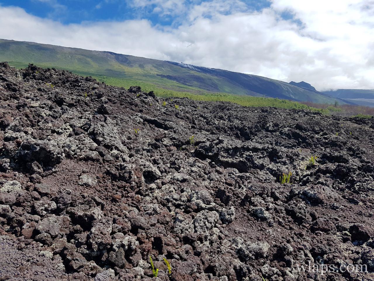 Grand Brulé à La Réunion