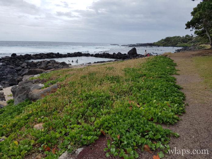 Plage de Grand Bois à l'ile de La Réunion