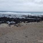 Plus belle plage de la Réunion