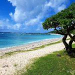 la-plage-palmar-ile-maurice