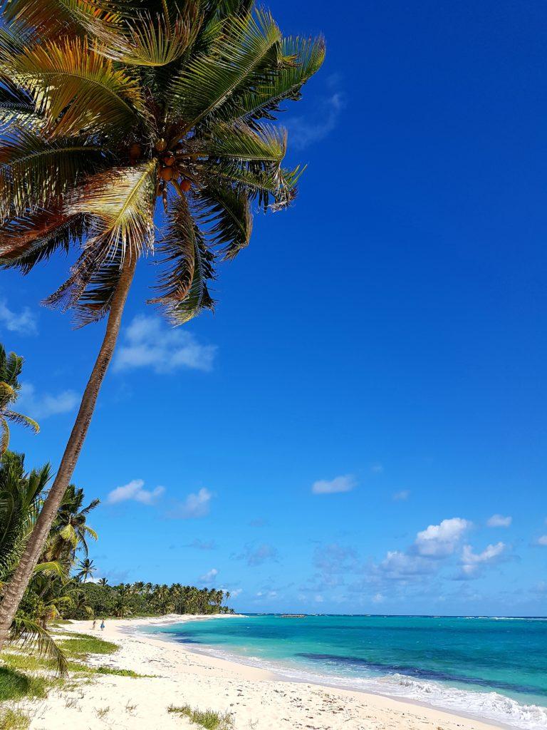 Visiter l'ile de Marie Galante et sa belle plage de la Feuillère à Marie Galante