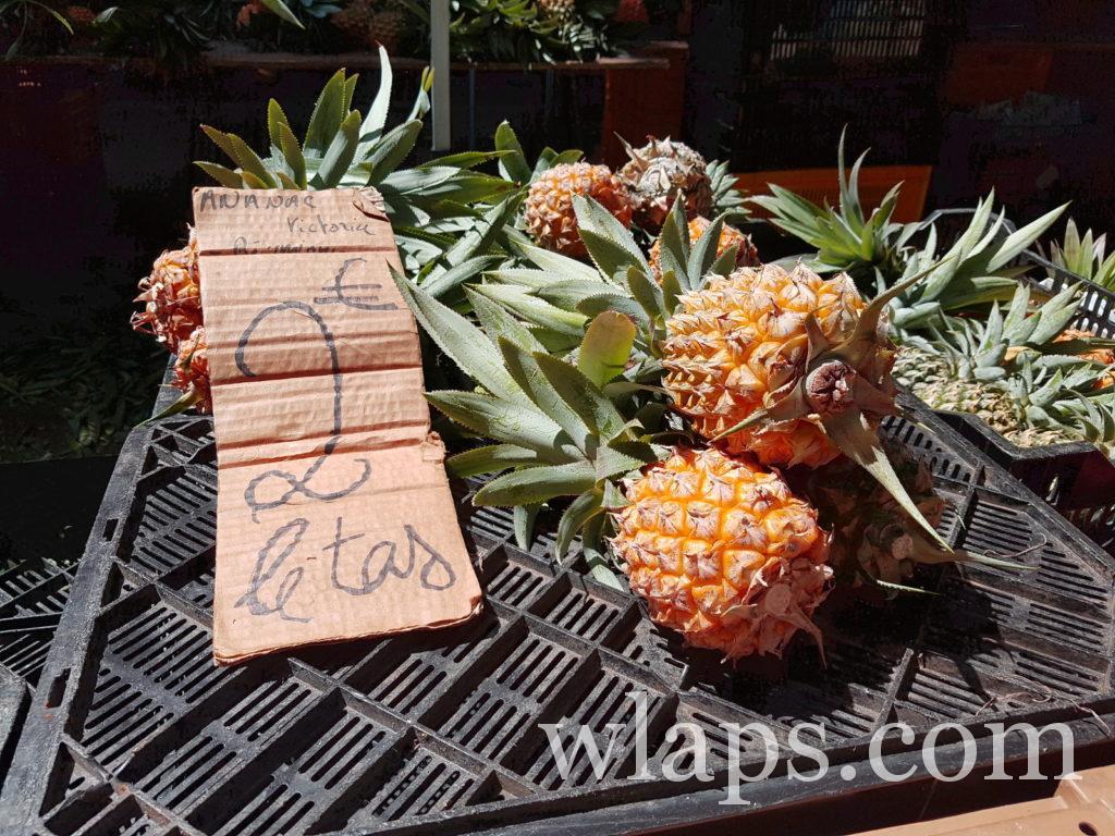 Ananas de La Réunion