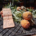 ananas-victoria-fruit-exotique-ile-de-la-reunion