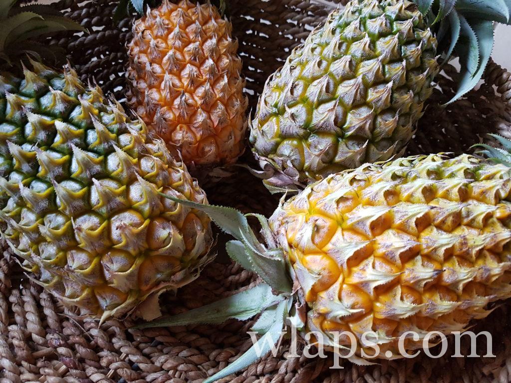 ananas victoria : fruit exotique de l'ile Maurice