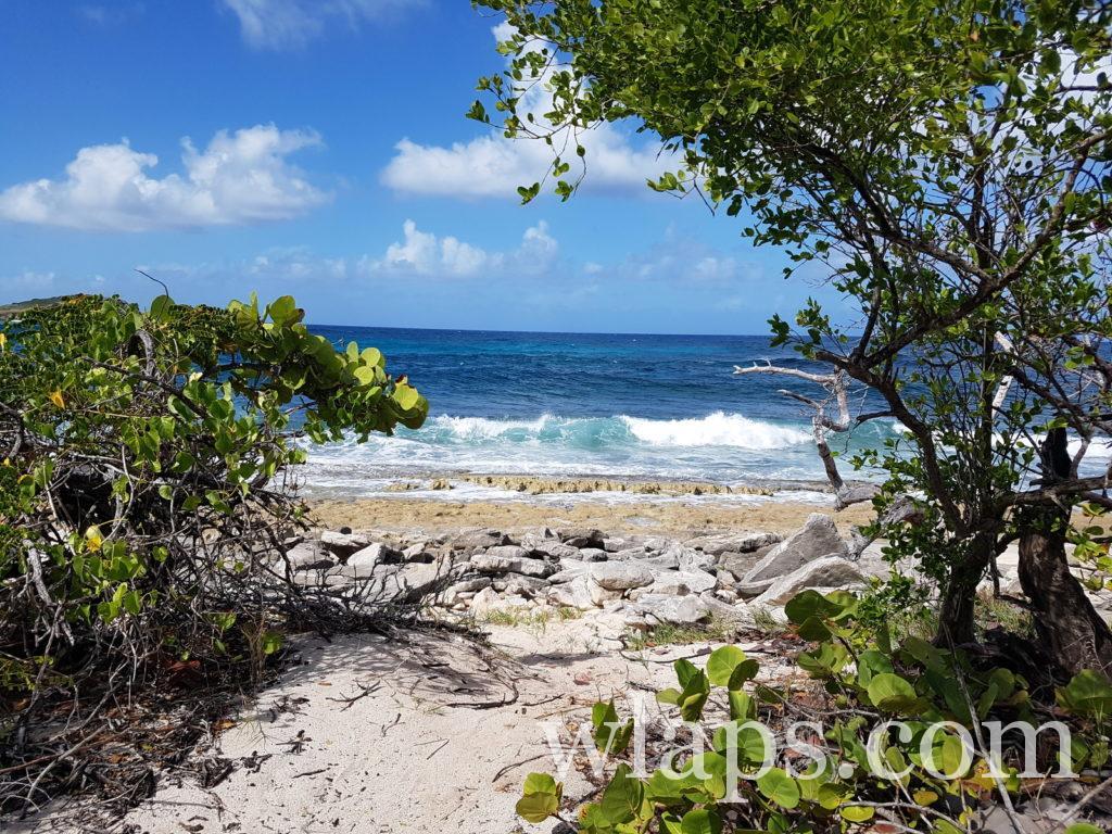 Plage naturiste de Anse à la Plume en Guadeloupe