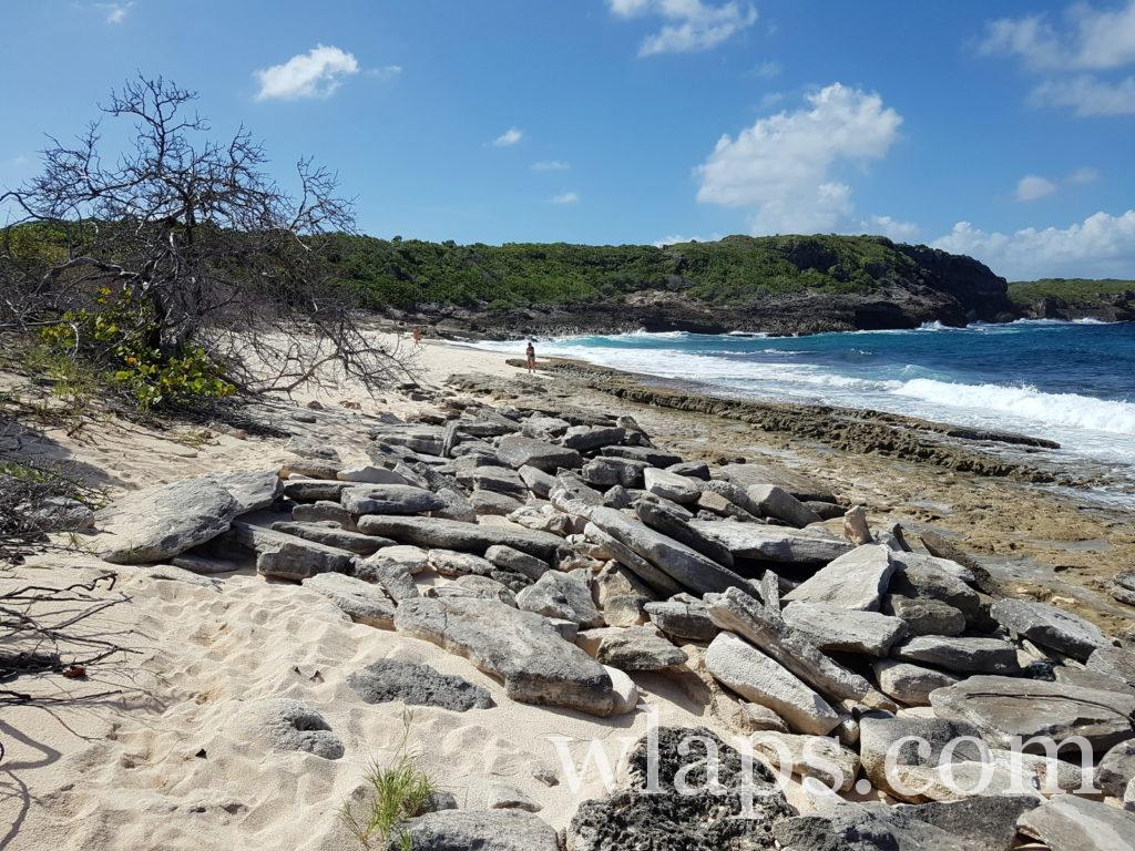 La plage naturiste de Anse à la Plume en Guadeloupe