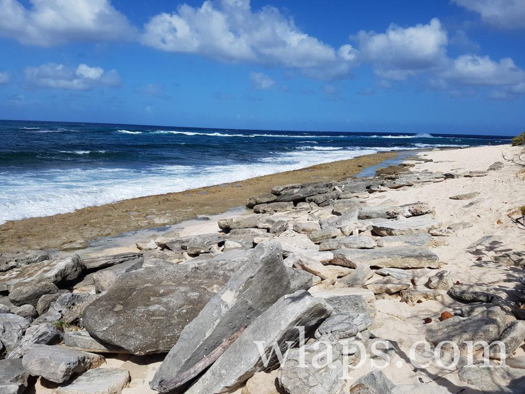 La belle plage naturiste de Anse à la Plume en Guadeloupe