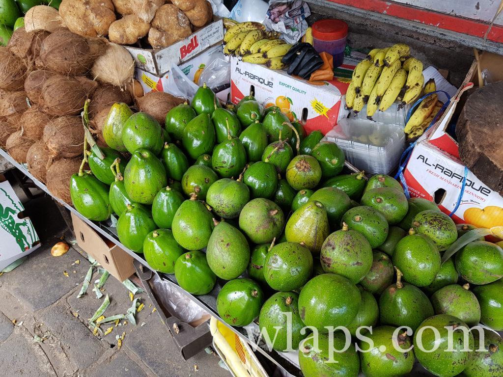 Avocats légumes exotiques de l'ile Maurice