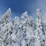 balade-raquettes-neige-aubrac-2