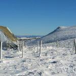 des-randonnees-en-raquettes-a-neige-sur-aubrac-1