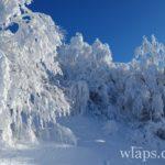 des-raquettes-a-neige-draille-de-germaine-aubrac-6