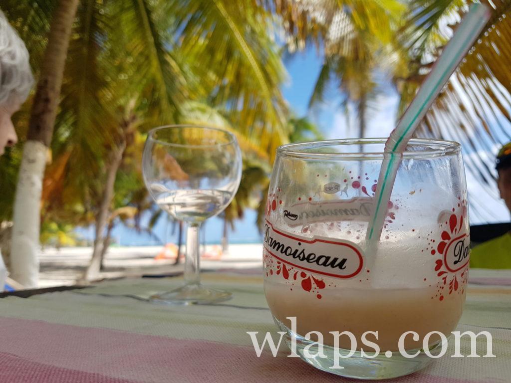 Quel rhum ramener de Guadeloupe ? du punch coco forcément de Gwadloup !