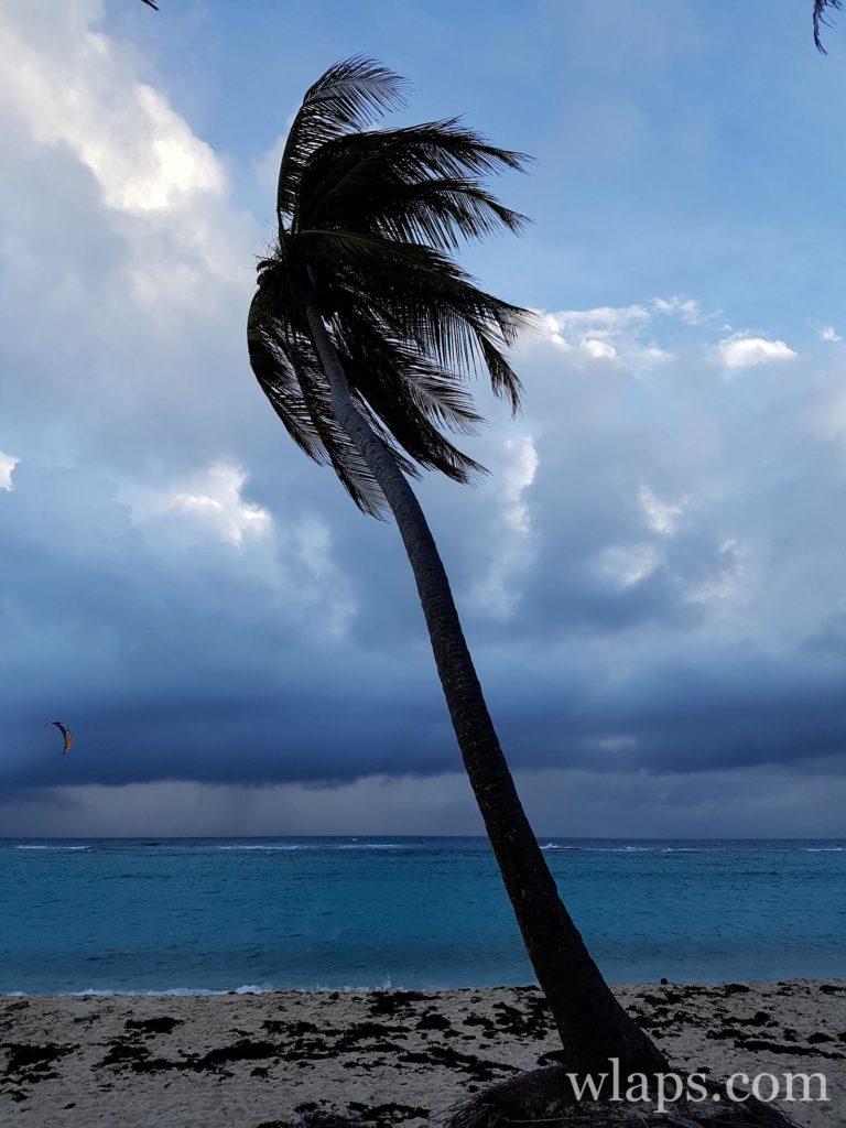 La pluie sur la plage de la Feuillère à marie galante