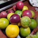 fruits-de-la-passion-fruit-exotique-la-reunion