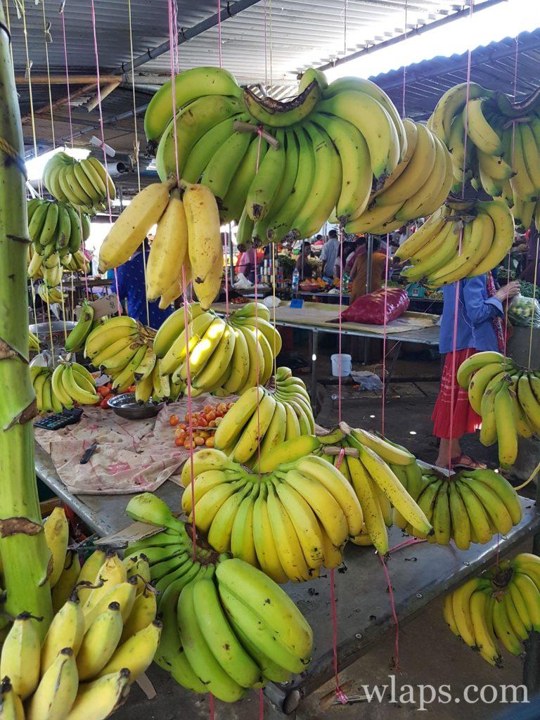 régime de bananes à l'ile maurice