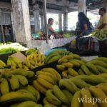 fruits-tropicaux-goodlands-ile-maurice