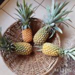 Fruits tropicaux de l'île Maurice