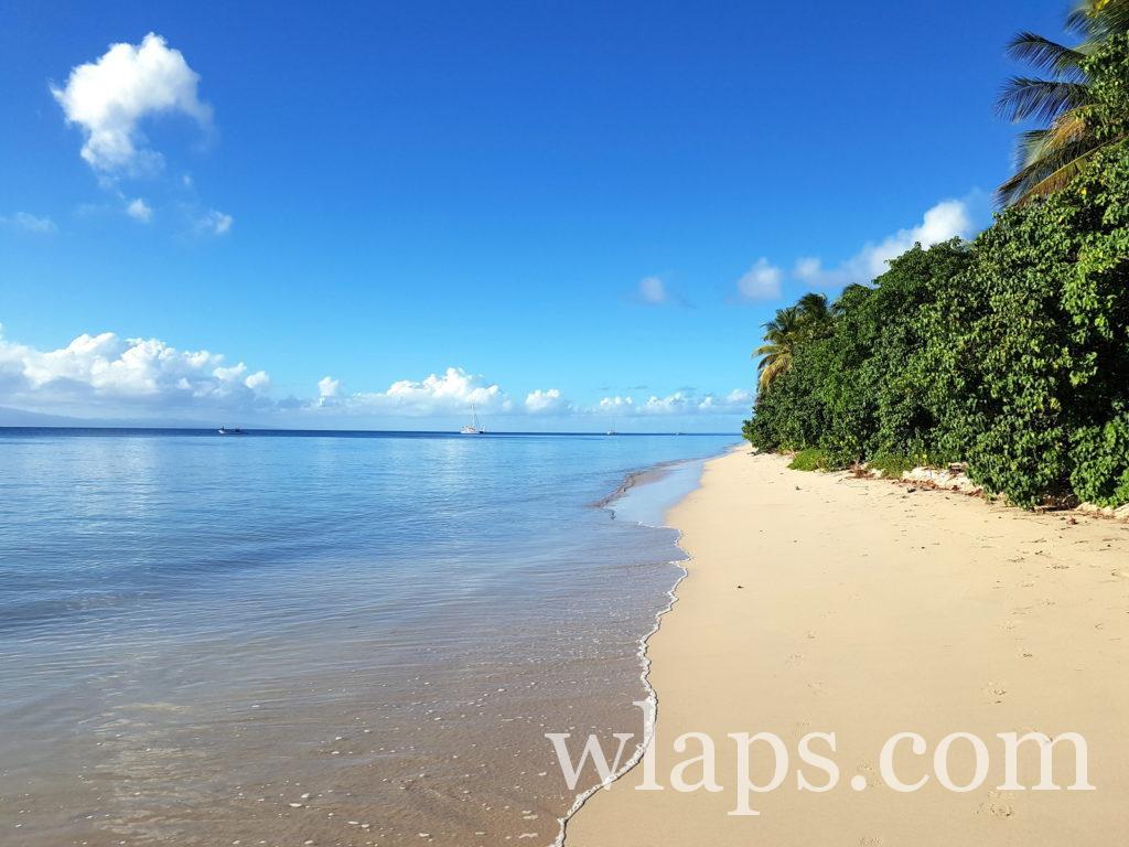 Une plage à découvrir lors de votre visite à Marie Galante