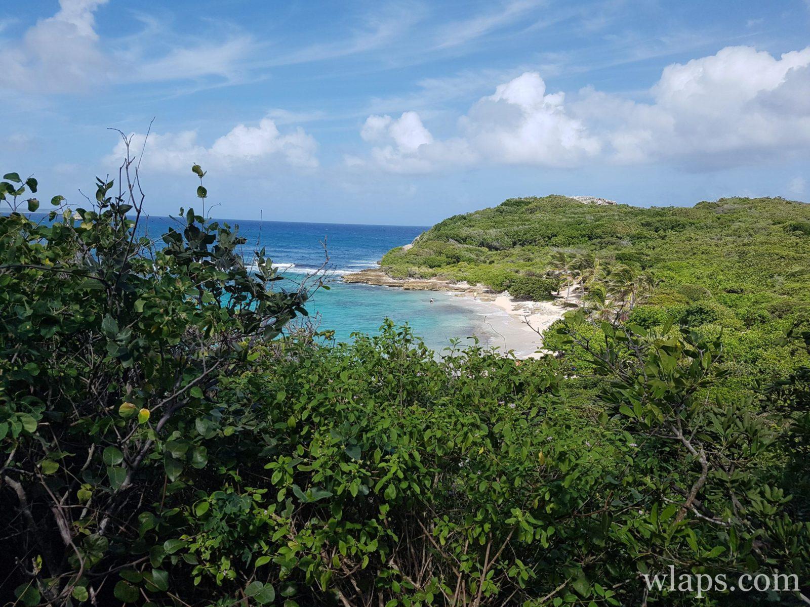 Plage naturiste de l'Anse Tarare en Guadeloupe