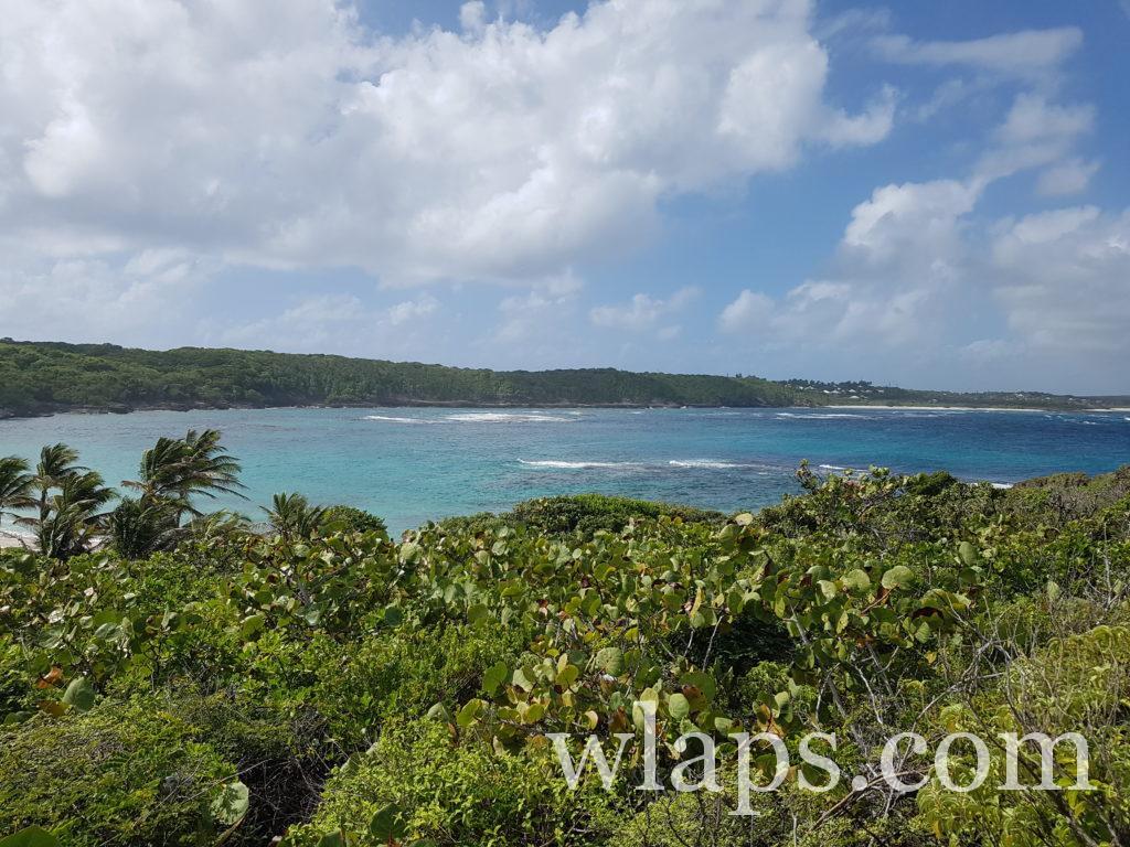 La plage naturiste de l'Anse Tarare en Guadeloupe