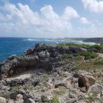 la-plage-naturiste-anse-tarare-guadeloupe-4