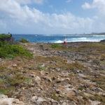 la-plage-naturiste-anse-tarare-guadeloupe-6