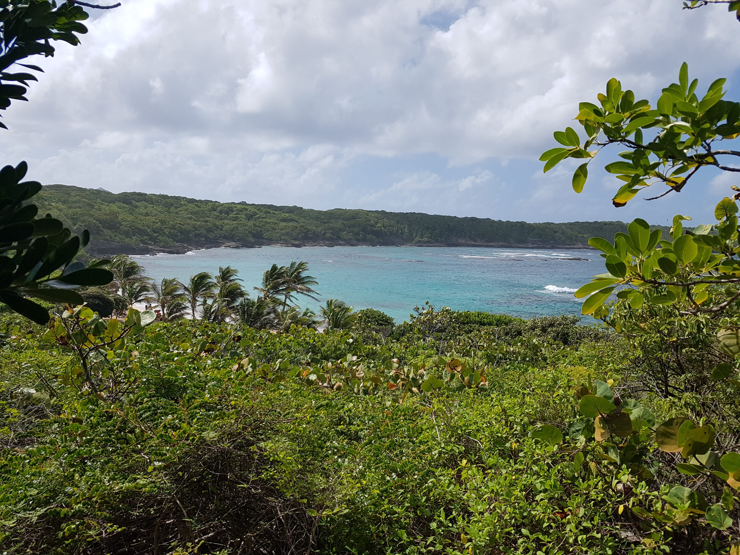 Vue sur la plage naturiste de Anse Tarare en Guadeloupe