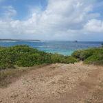 la-plage-naturiste-anse-tarare-guadeloupe-9
