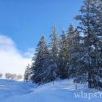 le-plateau-de-aubrac-randonnee-raquettes-a-neige-7