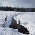 le-plateau-de-aubrac-randonnee-raquettes-a-neige-9