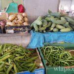 legumes-exotiques-ile-maurice