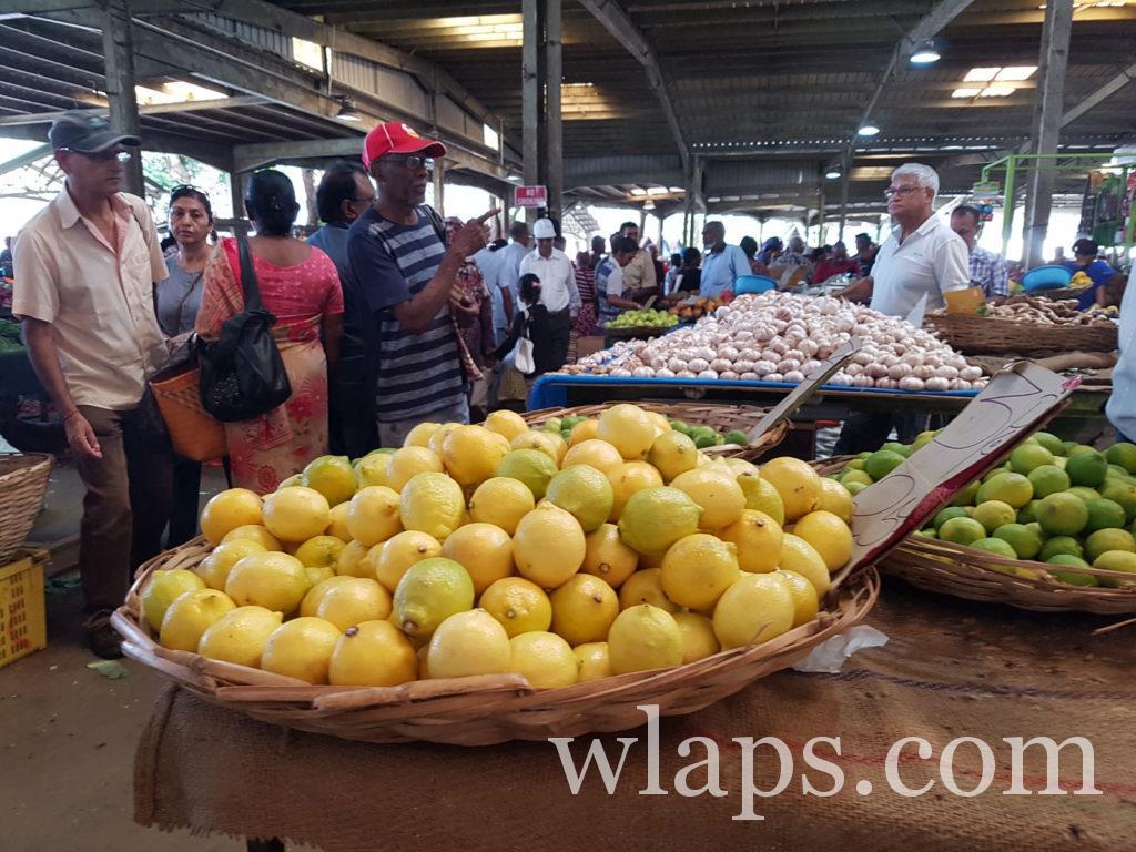 Quels fruits à l'ile Maurice est-ce ? des citrons jaunes sur le marché local
